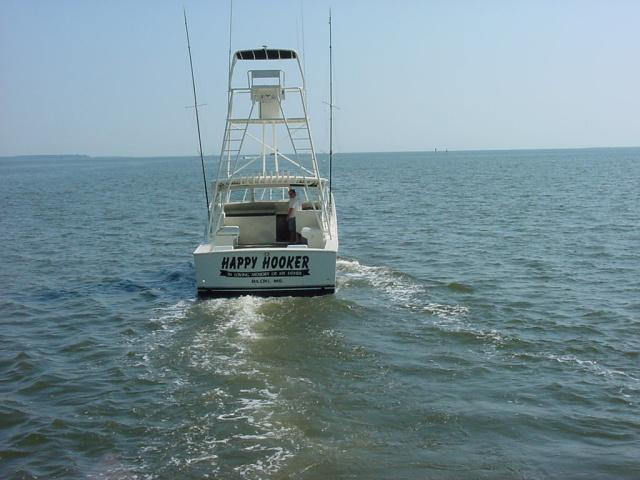 Fishing charters biloxi mississippi gulf coast charter for Charter fishing gulf shores